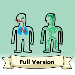 Biology Quiz: Learn The Systems of the Human Body
