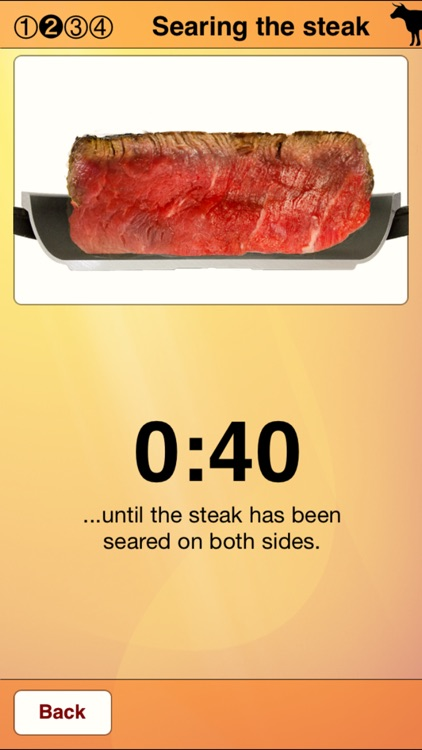 Steak Master - Perfect steaks screenshot-3