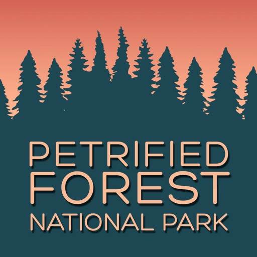 Petrified Forest National Park Visitor Guide