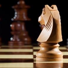 Activities of Chess Grandmaster 2017