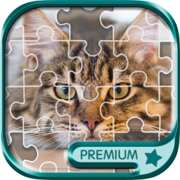 Sliding Block Game  Slide Puzzle & Photos - Pro