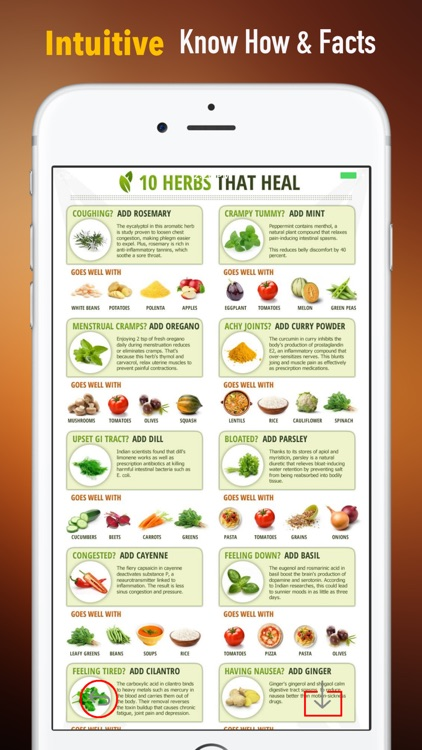 Herbal for Beginners:Natural Medicine Treatment