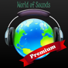 Graham McCabe - World of Sounds - Premium artwork