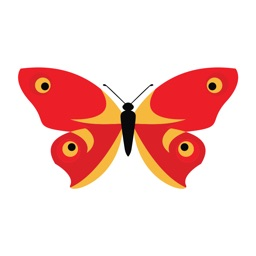 Color Butterfly Stickers for iMessage