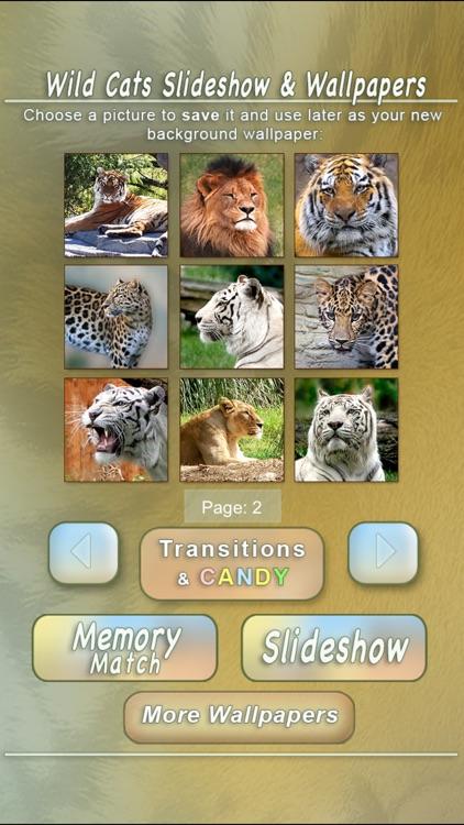 Wild Cats Slideshow & Wallpapers screenshot-4