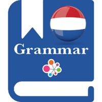 Codes for Dutch Grammar - Improve your skill Hack