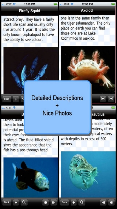 Weirdest Sea Creatures review screenshots