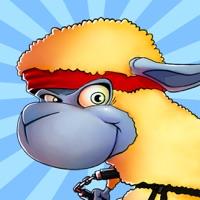Codes for Kung-Fu Sheep Hack