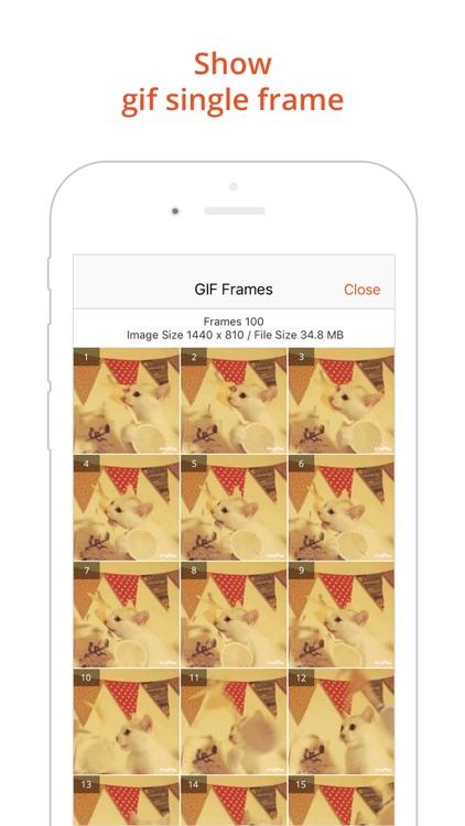 GIF Viewer Pro - Animated GIF Player Album screenshot-4