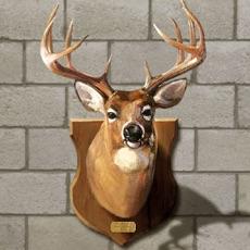 Activities of Kill Deer 3D: Gun Simulator Animal Target Shooting