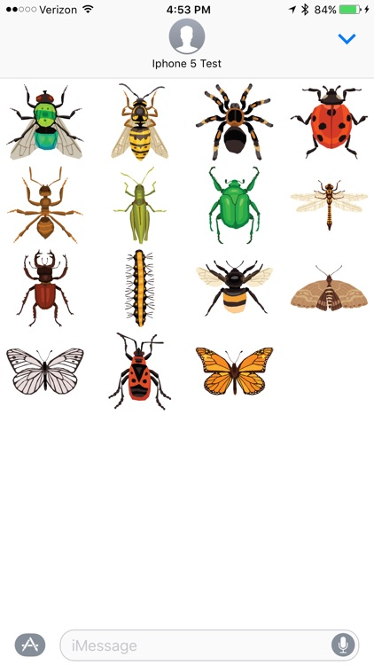 Bugs - Sticker Pack