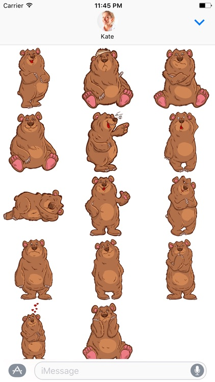 Big Bear - Stickers for iMessage screenshot-3
