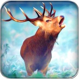 Deer Hunt : Snow World