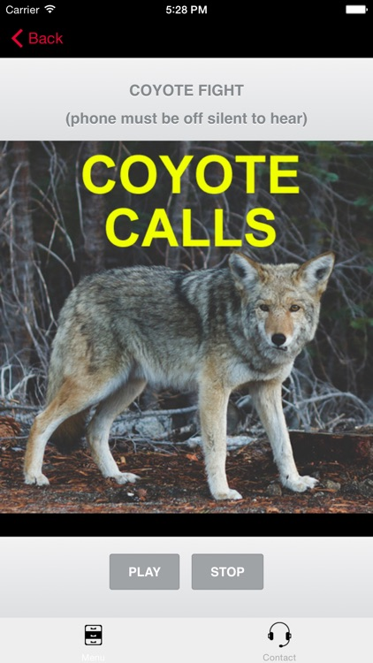 Coyote Calls for Hunting
