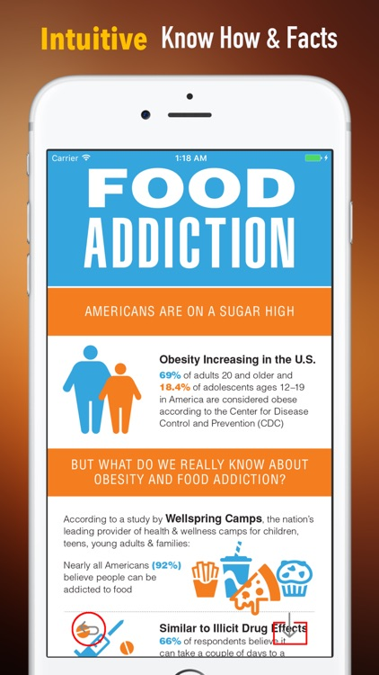 Food Addiction Self Help Handbook:Overcoming