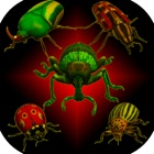 Réels insectes: Beetle Smasher icon