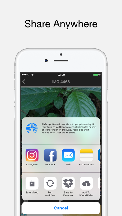Live to Video: Live Photo for Instagram as Video | App Price