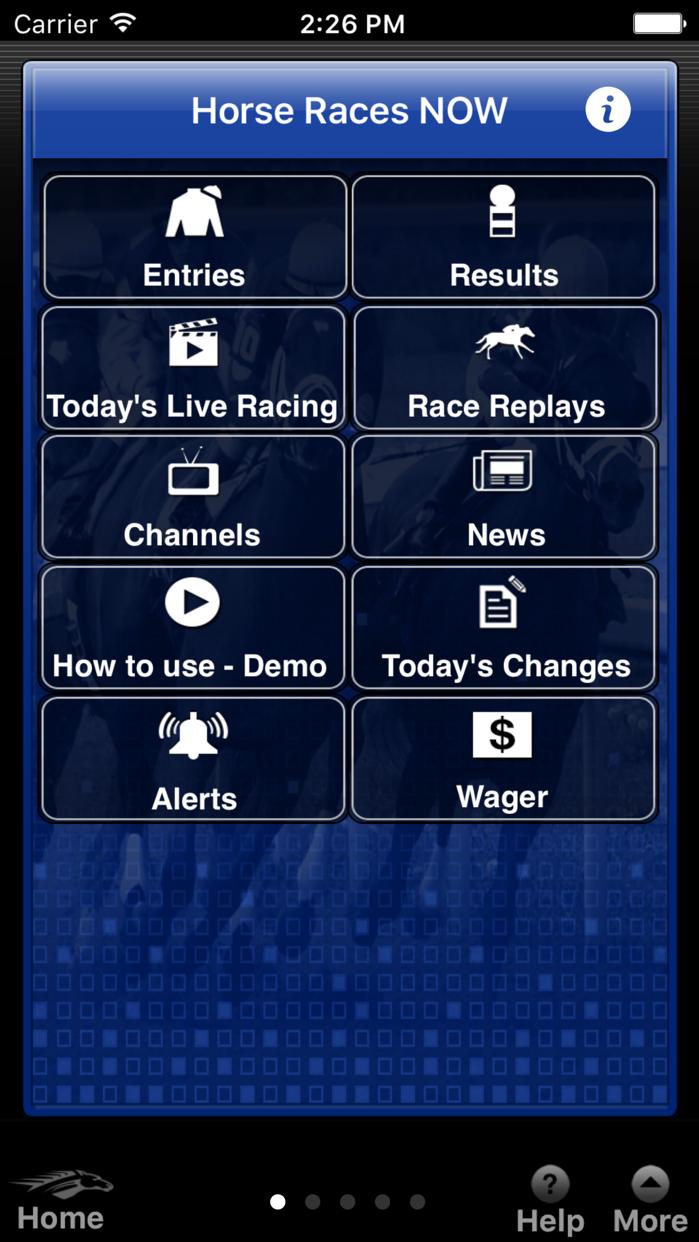 Horse Races Now Screenshot
