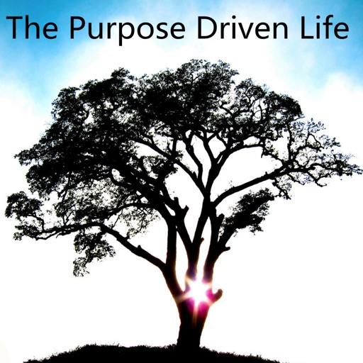 Practical Guide For The Purpose Driven Life|