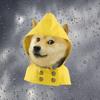 单身狗天气-PM2.5污染指数监控精准查询