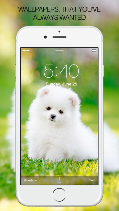 Puppy Wallpapers – Cute Puppy Pictures & Images screenshot one