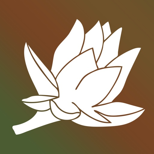 Alternative Healing Network