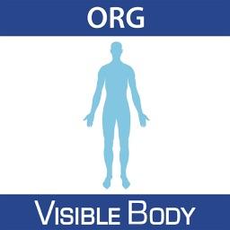 For Organizations - Anatomy & Physiology