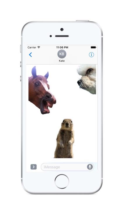 Animal Photobombs - Free, Classic, Horse, Llama