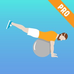 Exercise Ball Workouts & Stability Weighted Plans