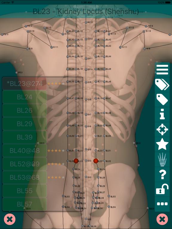 Massage Map 3D Light screenshot