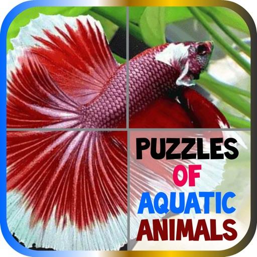 Puzzles of Aquatic Animals