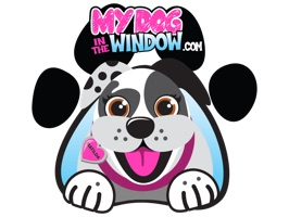 MyDoginTheWindow