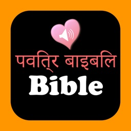 Hindi-English Bilingual Indian Audio Holy Bible