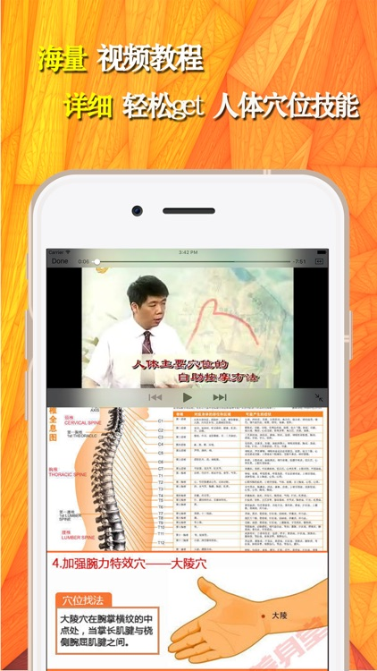 人体穴位中医专业版-针灸经络养生与按摩保健