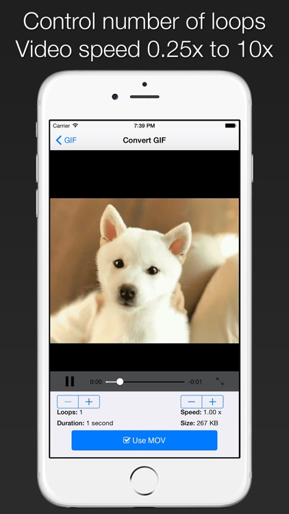GIFCon - Convert GIFs to video screenshot-1