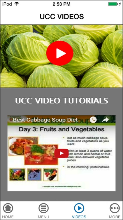 Easy Cabbage Fat-Burning Diet for Lose Weight Fast