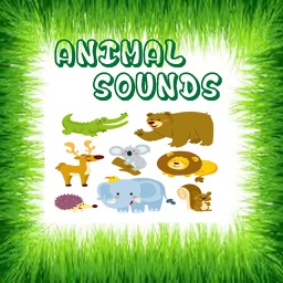 Real Animal Sounds and Pictures for Toddlers