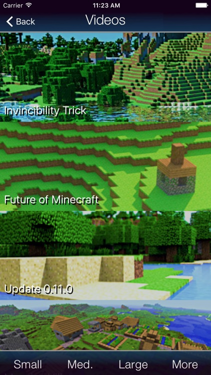 Bases for Minecraft screenshot-3