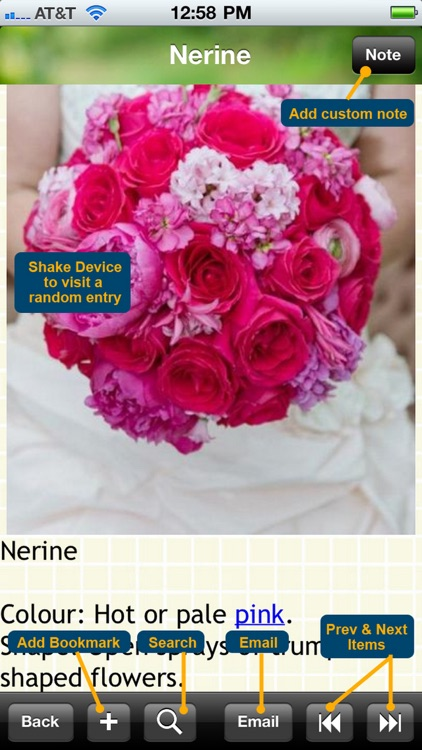 120 Wedding Flower List screenshot-3