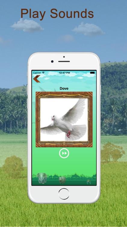 Animal And Bird Sounds screenshot-4
