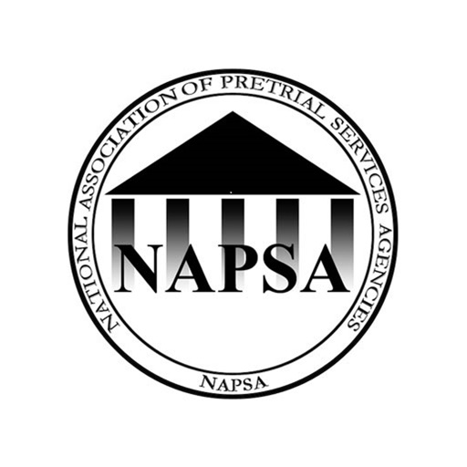 NAPSA 2016 Annual Conference icon