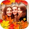 秋天相框 - 相册和拼贴