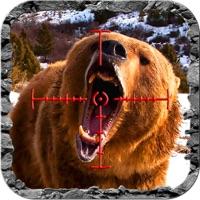 Codes for Bear Hunter : The sniper or shotgun elite of 2017 Hack