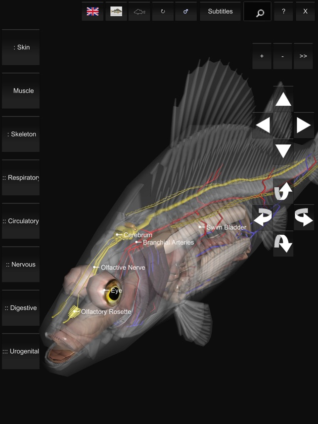 3d Fish Anatomy On The App Store