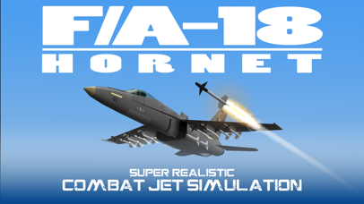 FA18 HORNET JET FIGHTER screenshot 1