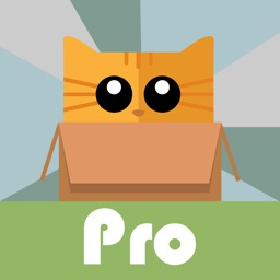 BoxCat BrickBuster Pro