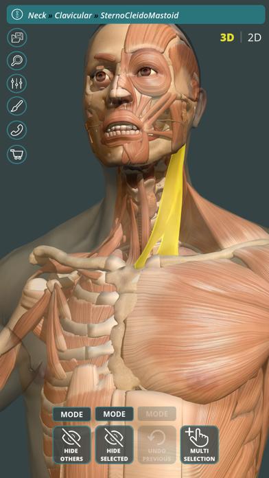 Visual Anatomy 3D | HumanScreenshot of 1