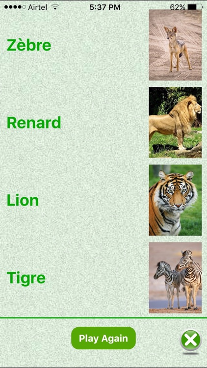 Flashcards French Lesson screenshot-3