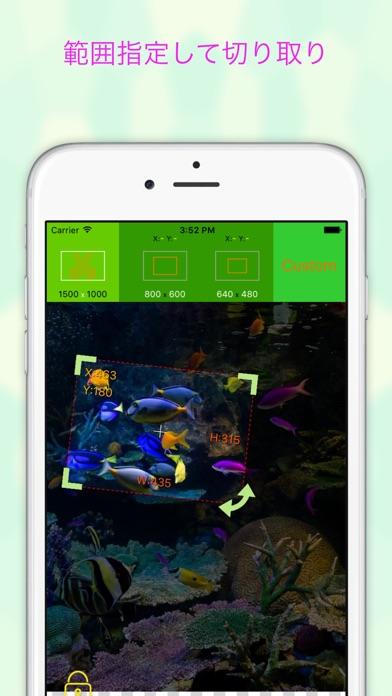 EverClipper - 写真/画像を簡単リサイズ ScreenShot1