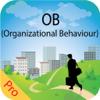 Raj Kumar - MBA Organizational Behavior artwork